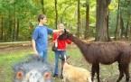 Beni De Çek Pampa-Hayvanların Komik Halleri