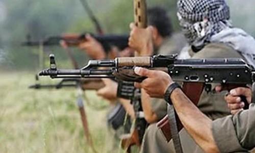 Bingöl'de 2 terörist öldürüldü