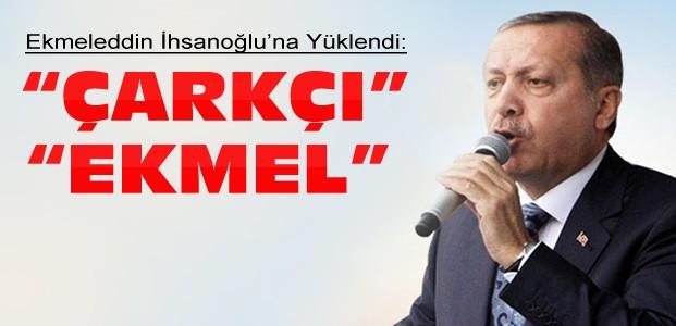 Erdoğan:Her Yanın Profesör Olsa Ne Yazar?