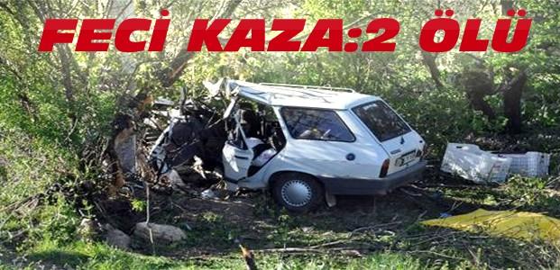 Konya Afyon yolunda feci kaza:2 ölü 1 yaralı