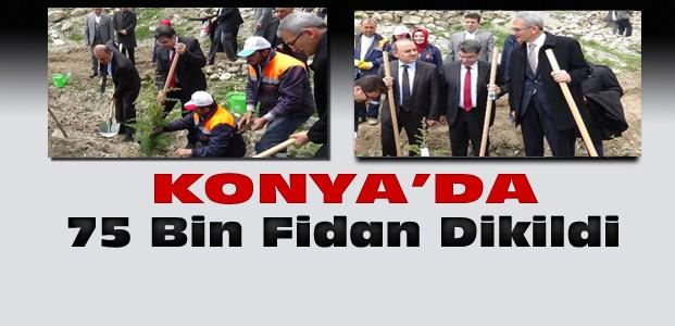 Konya'da 75 Bin Fidan Toprakla Buluştu