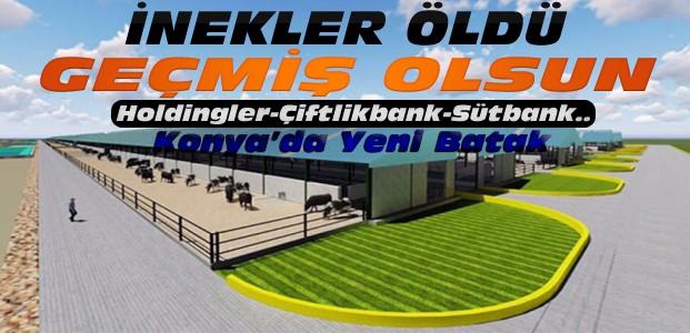 Konya'da Çiftlikbanktan Sonra Şimdi de Sütbank Skandalı