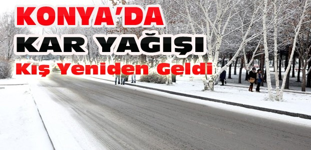 Konya'da Yeniden Kar Yağışı
