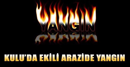 Kulu'da Ekili Arazide Yangın