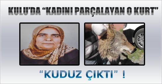 Kulu'da Kadını Parçalayan Kurt Kuduz Çıktı !