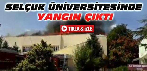 Selçuk Üniversitesinde Yangın-VİDEO