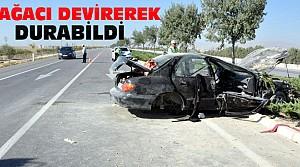 Karşı Şeride Geçen Otomobil 3 Ağacı Devirdi