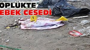 Konya'da Aslım Çöplüğünde Bebek Cesedi Bulundu