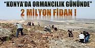 21 Mart Ormancılık Gününde Konya'da 2 Milyon Fidan