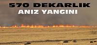 570 Dekarlık Anız Ateşe Verilerek Yakıldı