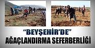 Beyşehir'de Ağaçlandırma Seferberliği