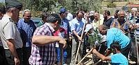 Beyşehir'de Mezarlıklar Ağaçlandırılıyor
