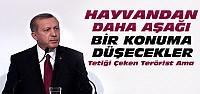 Cumhurbaşkanı Erdoğan'dan sert açıklamalar