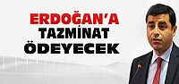 Demirtaş Erdoğan'a tazminat ödeyecek