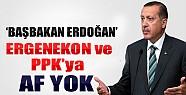 Erdoğan Ergenekon'a Af  İçin Ne Dedi?