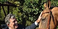 Gül'ün Atı İstanbul'a Getirildi
