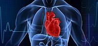 Kalp Ve Damar Hastalarına Bayram Uyarısı