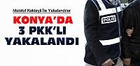 Konya'da 3 PKK'lı Yakalandı