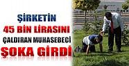 Konya'da Bir Şirketin 45 Bin Lira Parasını Çaldıran Muhasebeci Şoka Girdi!