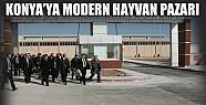 Konya'ya Modern Hayvan Pazarı
