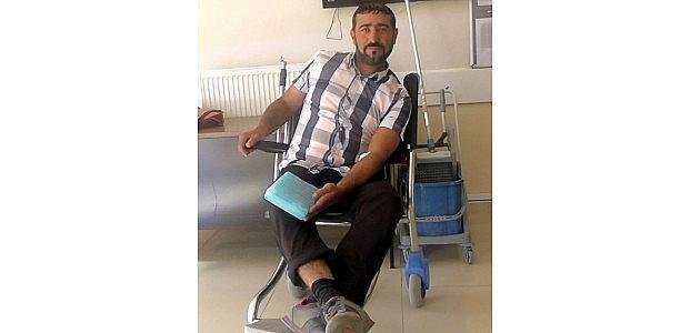 Kurtları Kovalarken Attan Düşüp Yaralandı