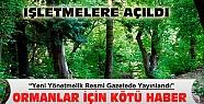 Ormanlık alanlar için kötü haber-Yeni yönetmelik resmi gazetede yayınlandı