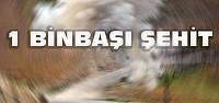 Tunceli'de Çatışma:1 Binbaşı Şehit Oldu