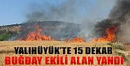 Yalıhüyük'te 15 Dekar Buğday Ekili Alan Yandı!